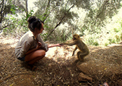 05-MARRAKECH-TOURS-EXCURSIONS-GALLERY