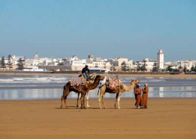 16-MARRAKECH-TOURS-EXCURSIONS-GALLERY