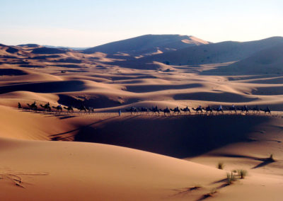 35-MARRAKECH-TOURS-EXCURSIONS-GALLERY